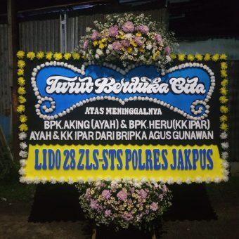 Toko bunga sukabumi, florist sukabumi, bunga papan sukabumi, karangan bunga sukabumi, papan bunga sukabumi